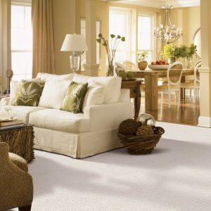 White Carpet in Living Room | Terry's Floor Fashions