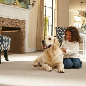 Pet Friendly Carpet | Terry's Floor Fashions
