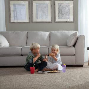 Carpet at living room | Terry's Floor Fashions