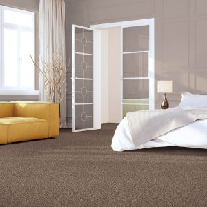 Impressive selection of Carpet | Terry's Floor Fashions