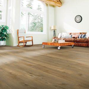 Laminate Floor of Living Room | Terry's Floor Fashions