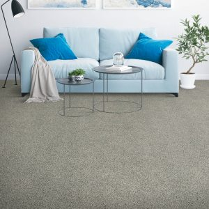 Living Room Carpet | Terry's Floor Fashions
