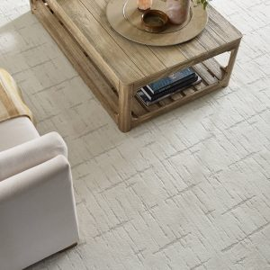 Rustique Vibe Living Room Carpet | Terry's Floor Fashions