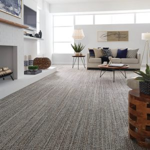 Sundance Jura Grey Carpet | Terry's Floor Fashions