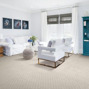Carpet in Living Room | Terry's Floor Fashions