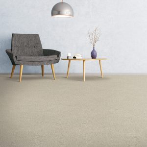 Soft Comfortable Carpet | Terry's Floor Fashions