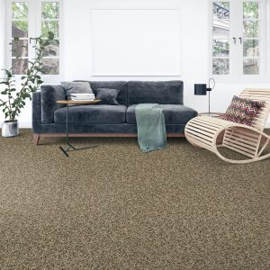 Soft Carpet | Terry's Floor Fashions
