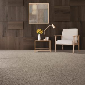 Stylish Carpet | Terry's Floor Fashions