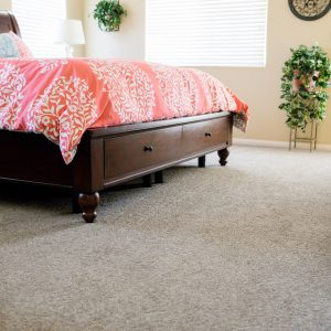 Carpet of Bedroom | Terry's Floor Fashions