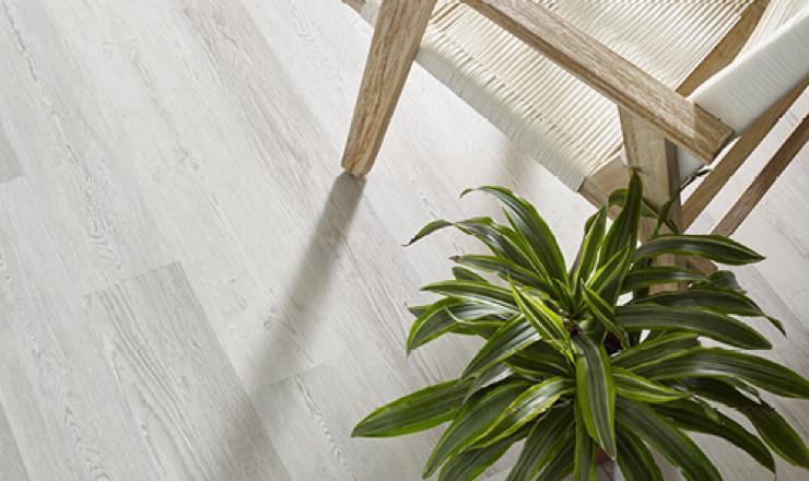 Shaw basilicia vinyl flooring | Terry's Floor Fashions