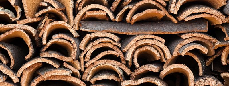 Cork Flooring from Oak Bark | Terry's Floor Fashions