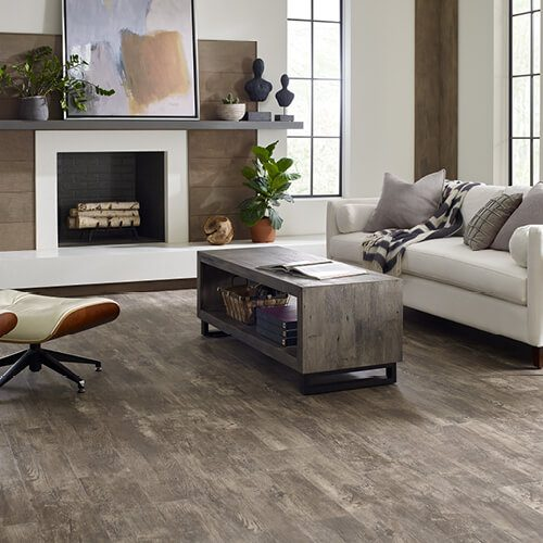 Paramount plus at living room | Terry's Floor Fashions