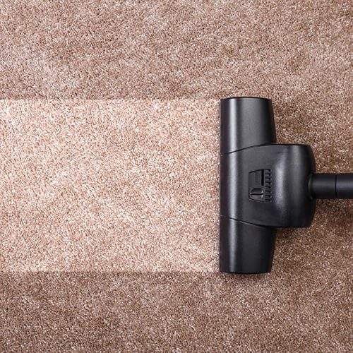 Carpet cleaning | Terry's Floor Fashions